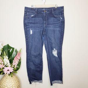 Lane Bryant Distressed Straight Dark Wash Jeans